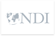 Ìcono del Instituto Nacional Demócrata para los Asuntos Internacionales