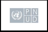 Ícono del Programa de las Naciones Unidas para el Desarrollo